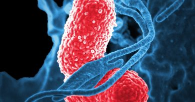 Avoiding hospital-acquired infections will be posible with FLEXPOL.